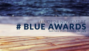 Les champions de l'Innovation récompensés lors de la cérémonie des Blue Awards