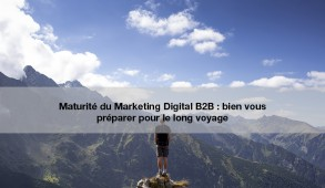 Maturité marketing digital B2B